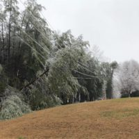Weekend Winter Storm Downs Trees, Lines