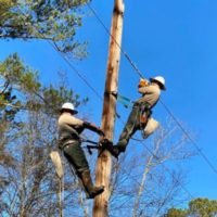 Gusty Winds and Saturated Ground Lead to Electric Cooperative Power Outages