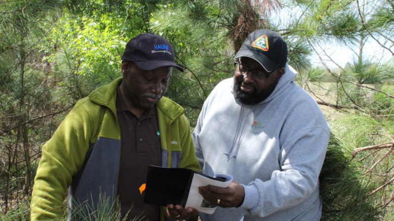 Roanoke Electric Empowers Black Landowners through Sustainable Forestry and Land Retention