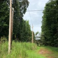 N.C. Co-ops Respond to Tropical Storm Zeta